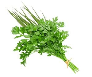 Cheiro Verde Maço Unidade - Verdura de folha