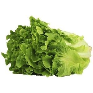 Chicoria Maço Unidade - Verdura de folha