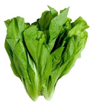 Almeirão Maço Unidade - Verdura de folha